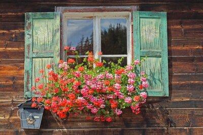 Adesivo janelas de madeira velhas com Planter