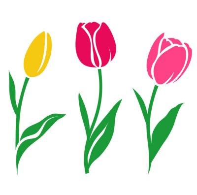 Adesivo Jogo da silhueta colorida da tulipa. Ilustração do vetor. Coleção de flores decorativas