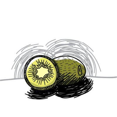 Adesivo Kiwi com tinta tirada mão-vetor