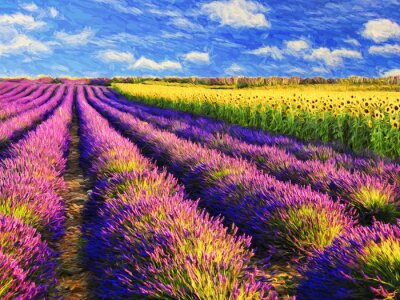 Adesivo Lavender and sunflowers field.