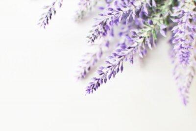 Adesivo Lavender ramo em um fundo branco