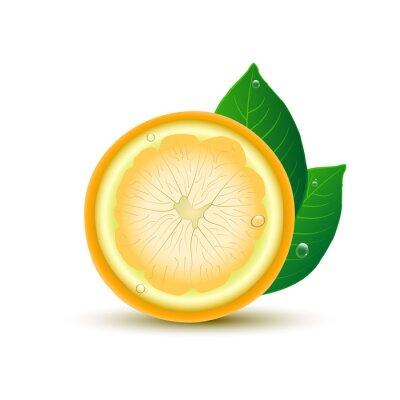 Adesivo Limão abstrato com folhas e gotas no fundo branco