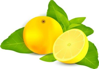 Adesivo Limões frescos com folhas de fundo branco