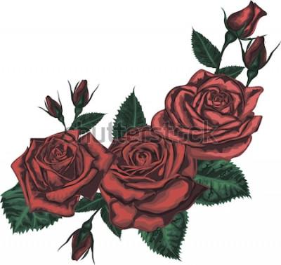 Adesivo Lindo buquê com rosas vermelhas. Arte realista vector - rosas vermelhas em fundo branco. - Elemento de design para cartão