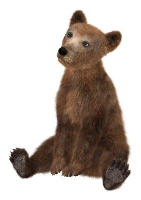 Adesivo Little Brown Urso