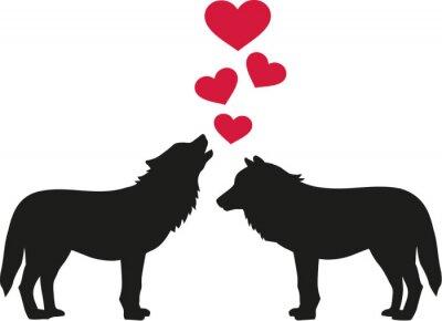 Adesivo Lobos apaixonados