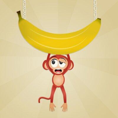 Adesivo Macaco com banana