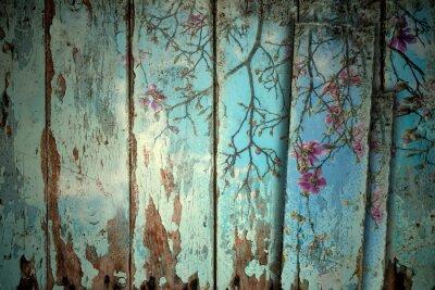 Adesivo Magnólia na primavera fundo velho
