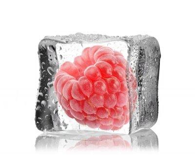 Adesivo Malina w kostce lodu