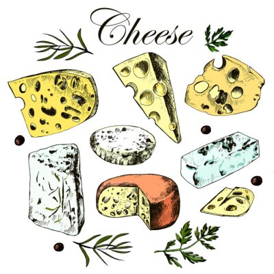 Adesivo mão desenho definido com diferentes queijos