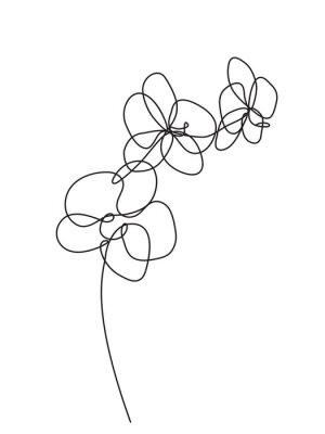 Adesivo Mão-extraídas flores da orquídea. Ilustração em vetor preto e branco