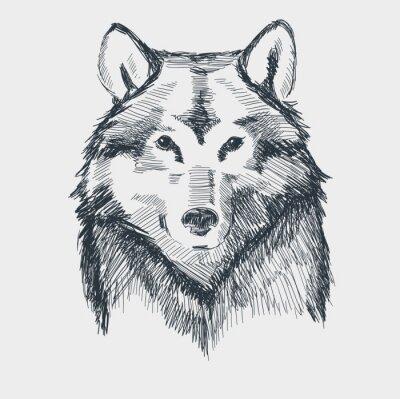 Adesivo Mão Lobo cabeça grunge ilustração desenhada do vetor do esboço