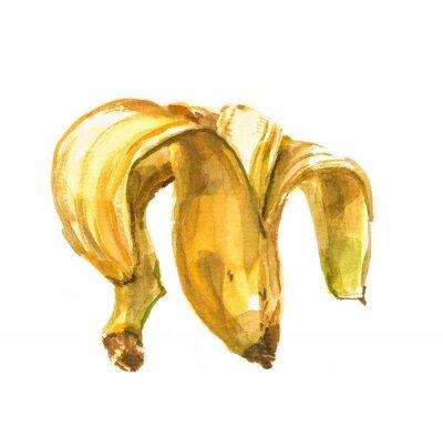 Adesivo Mão, pintado, aguarela, ilustração, banana