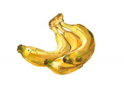 Adesivo Mão, pintado, aguarela, ilustração, bananas