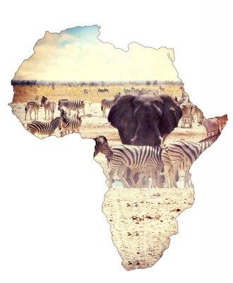 Adesivo Mapa, África, continente, conceito, safari, waterhole, elefantes