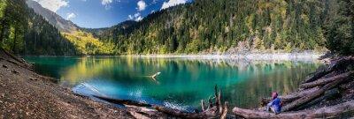 Adesivo Menina, admirar, panorâmico, vista, montanhas, lago, ritsa, reserva, abcásia