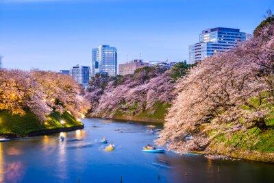 Adesivo Moat imperial de Tokyo na mola