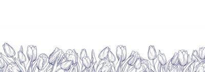 Adesivo Modelo de banner horizontal plana com tulipas de contorno em fundo branco