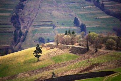 Adesivo Mola ensolarada na vila da montanha. Campos e colinas