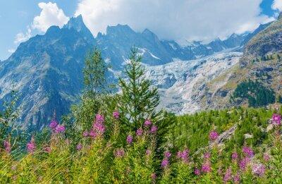 Adesivo Mont Blanc Paisagem maciça