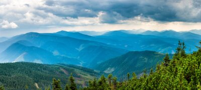Adesivo Montanhas azuis cobertas com floresta verde. Opinião do panorama de picos cume