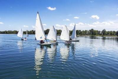 Adesivo Navegando no lago