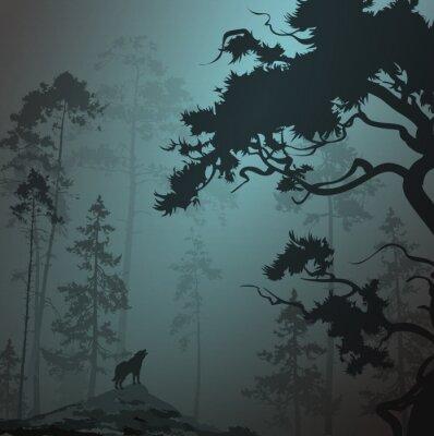 Adesivo Nebuloso, paisagem, silueta, floresta, pinheiros, lobo ...