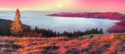 Adesivo Nevoeiro no Outono