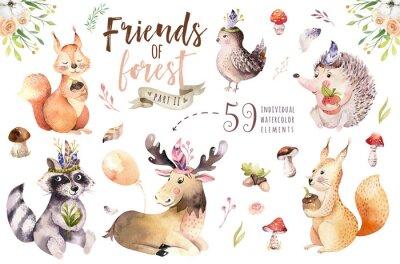 Adesivo O animal boêmio bonito do ouriço, do esquilo e dos alces dos desenhos animados do bebê da aquarela para o berçário, floresta isolou a ilustração da floresta para crianças. Animais de coelhinhos.