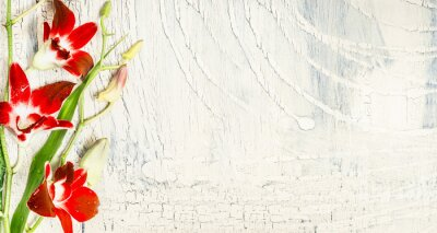 Adesivo O fundo chique gasto com orquídea vermelha floresce, vista superior, lugar para o texto.