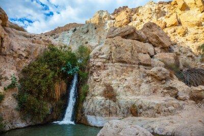 Adesivo O parque nacional e reservas Ein Gedi, Israel