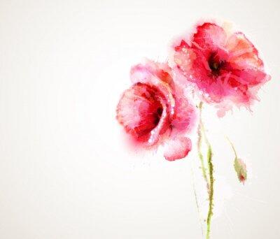 Adesivo Os dois floração papoilas vermelhas. Cumprimento-cartão.