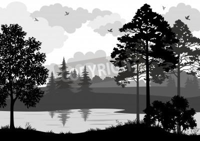 paisagem árvores rio e pássaros preto e cinza contorno silhueta