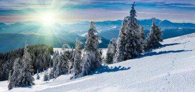 Adesivo Paisagem panorâmica do inverno nas montanhas. A neve cobriu árvores e picos de montanha na distância.