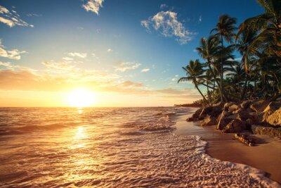 Adesivo Palm trees on the tropical beach