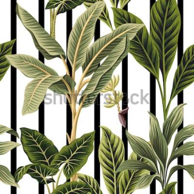 Adesivo Palmeiras tropicais do vintage, fundo preto e branco das listras do teste padrão sem emenda floral da árvore de banana. Papel de parede exótico da selva botânica.