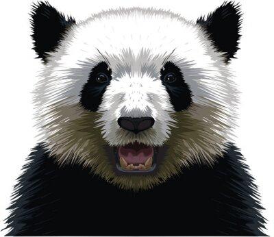 Adesivo PANDA - Buste
