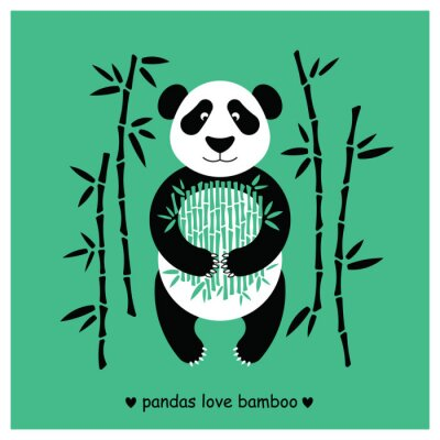 Adesivo Pandas de urso plano. Panda animal isolado.