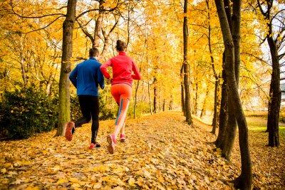 Adesivo Pares movimentando-se na natureza do outono