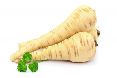 Adesivo parsnip vegetais