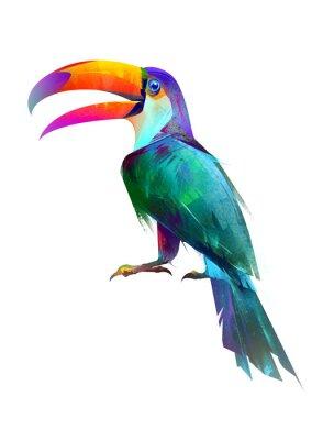 Adesivo Pássaro brilhante isolado isolado sentado lado Toucan