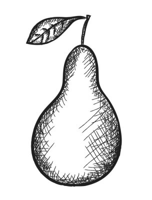 Adesivo pear Doodle