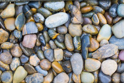 Adesivo Pedras do mar