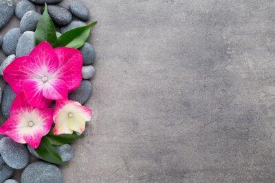 Adesivo Pedras e flores dos termas, no fundo cinzento.