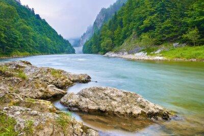 Adesivo Pedras no rio nas montanhas. O Rio Dunajec Gorge