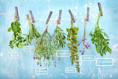 Adesivo Pendure para secar ervas