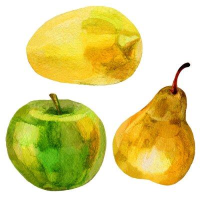 Adesivo Pêra, banana, mão, desenhado, pintura, watercolour, Ilustração, branca, fundo