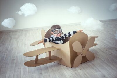 Adesivo Piloto