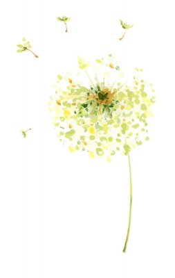 Adesivo Pintura, desenho, vetorial, Ilustração - ar, dandelions