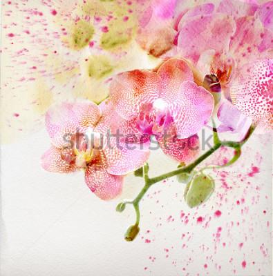Adesivo Pintura em aquarela, fundo floral